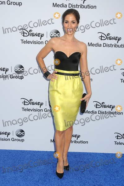 Ana Ortiz Photo - 19 May 2013 - Burbank California - Ana Ortiz Disney Media Networks International Upfronts 2013 held at Walt Disney Studios Photo Credit Byron PurvisAdMedia