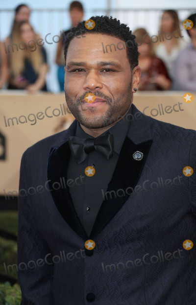 Anthony Anderson Photo - 29 January 2017 - Los Angeles California - Anthony Anderson 23rd Annual Screen Actors Guild Awards held at The Shrine Expo Hall Photo Credit F SadouAdMedia