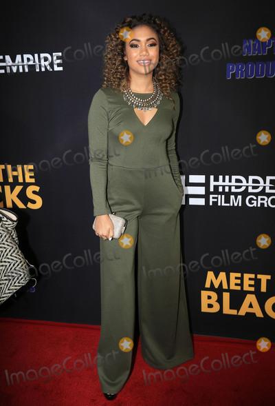Paige Hurd Photo - 29 March 2016 - Hollywood California - Paige Hurd Meet The Blacks Los Angeles Premiere held at ArcLight Hollywood Photo Credit Winston BurrisAdMedia