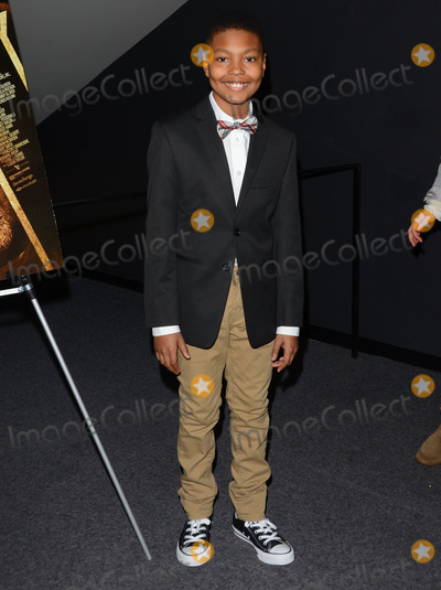 Alex Henderson Photo - 22 January 2015 - Los Angeles California - Alex HendersonLos Angeles special screening of SUPREMACY held at Landmark West LA Theater Photo Credit Birdie ThompsonAdMedia
