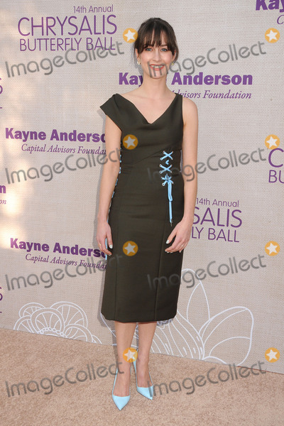 Michelle Mulitz Photo - 6 June 2015 - Los Angeles California - Michelle Mulitz 14th Annual Chrysalis Butterfly Ball held at a Private Residence Photo Credit Byron PurvisAdMedia
