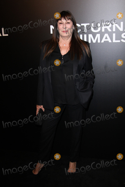 Anjelica Huston Photo - 11 November 2016 - Los Angeles California - Anjelica Huston Nocturnal Animals Los Angeles Screening held at the Hammer Museum Photo Credit AdMedia