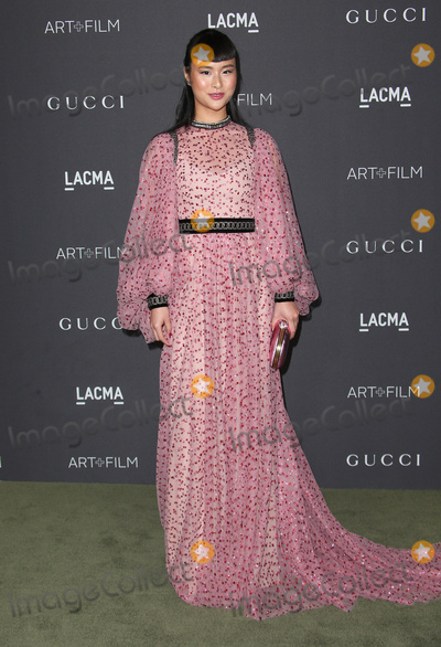 Asia Chow Photo - 29 October 2016 - Los Angeles California - Asia Chow 2016 LACMA Art  Film Gala honoring Robert Irwin and Kathryn Bigelow presented by Gucci held at LACMA Photo Credit AdMedia