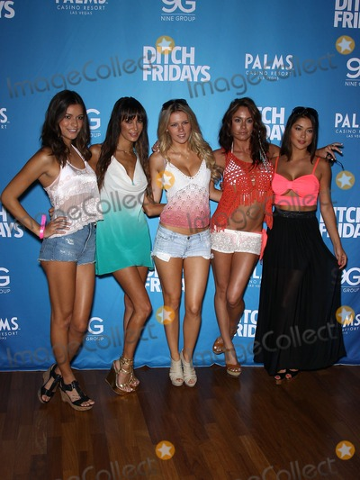 Chuck Liddell Photo - 05 July 2012 - Las Vegas Nevada - Vanessa Hanson Kenda Perez Chrissy Blair Rachelle Leah Arianny Celeste Chuck Liddell Arianny Celeste and UFC Octagon Girls host official UFC Fight Week Pool Party at Palms Pool  BungalowsPhoto Credit MJTAdMedia