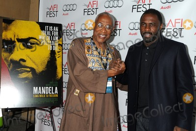 Ayuko Babu Photo - 10 November 2013 - Hollywood California - Ayuko Babu Idris Elba AFI FEST 2013 - Mandela Long Walk To Freedom Special Screening held at the Egyptian Theatre Photo Credit Byron PurvisAdMedia