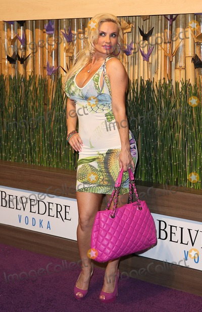 Coco Austin Photo - 28 April 2013 - Las Vegas NV -  Coco Austin The Worlds First Nobu Hotel Restaurant and Lounge Caesars Palace Las Vegas Celebrates Official Opening With a Poolside Party and Concert Featuring Grammy Nominated Performer Ed SheeranPhoto Credit mjtAdMedia