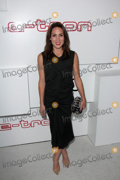 Amy Rosoff Photo - Amy Rosoffat Audi Celebrates Emmys Week 2015 Cecconis West Hollywood CA 09-17-15