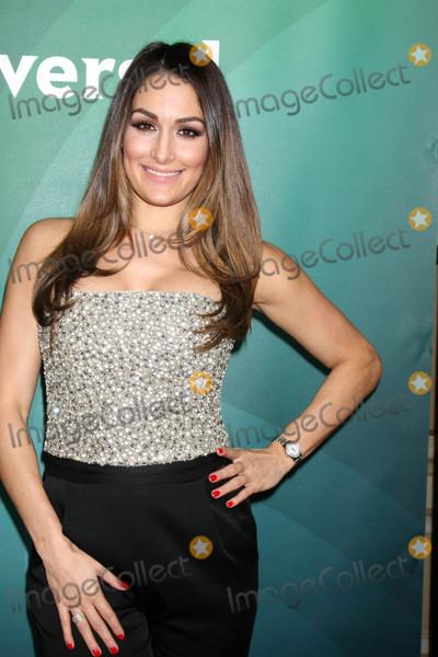 Nikki Bella Photo - Nikki Bellaat the NBCUniversal Cable TCA Press Day 2 Winter 2016 Langham Huntington Hotel Pasadena CA 01-14-16