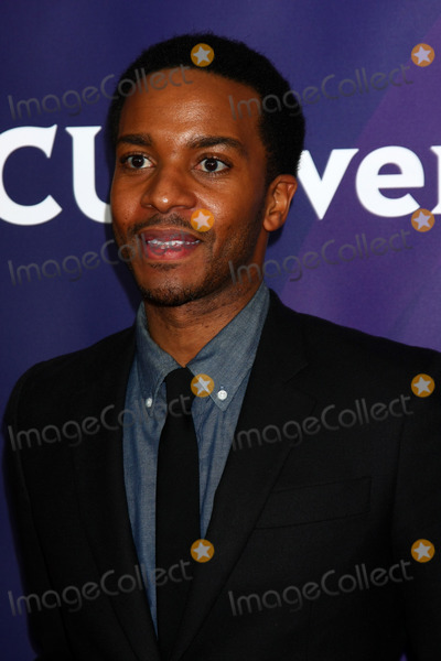 Andrae Holland Photo - LOS ANGELES - JAN 6  Andra Holland attends the NBCUniversal 2013 TCA Winter Press Tour at Langham Huntington Hotel on January 6 2013 in Pasadena CA