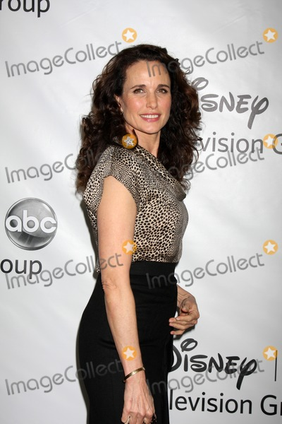 Andie McDowell Photo - LOS ANGELES - JAN 10  Andie McDowell arrives at the ABC TCA Party Winter 2012 at Langham Huntington Hotel on January 10 2012 in Pasadena CA