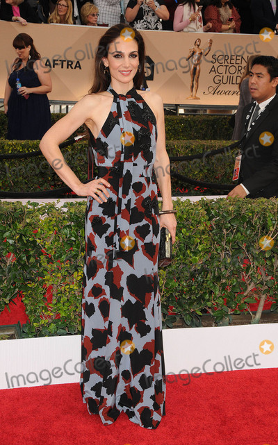 Annie Parisse Photo - Photo by KGC-136-JRstarmaxinccomSTAR MAX2016ALL RIGHTS RESERVEDTelephoneFax (212) 995-119613016Annie Parisse at the 22nd Annual Screen Actors Awards held at the Shrine Auditorium(Los Angeles CA)
