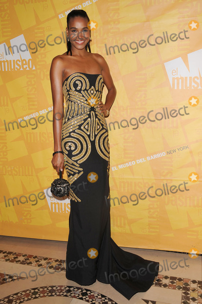 Alenis Sosa Photo - Model Alenis Sosa attends the El Museo Del Barrio Gala at Cipriani 42nd Street on May 26 2011 in New York City