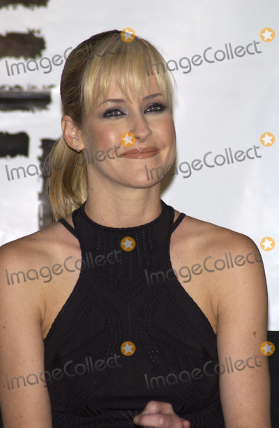 The Dixie Chicks Photo - THE DIXIE CHICKS star MARTIE MAGUIRE at press conference in Santa Monica California for Rock the Vote to launch the Chicks Rock Chicks Vote campaignJuly 21 2003 Paul Smith  Featureflash