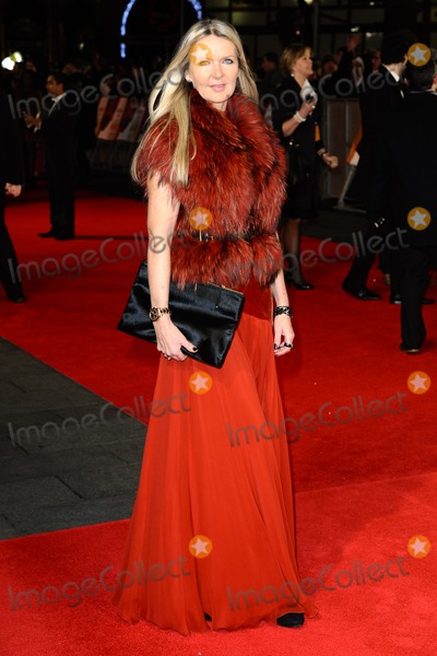 Amanda Wakeley Photo - Amanda Wakeley arrives for the premiere of  Mandela Long Walk to Freedom at the Odeon Leicester Square London 05122013 Picture by Steve Vas  Featureflash