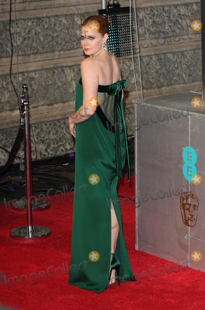 Amy Adams Photo - London UK Amy Adams at the EE British Acadamy Film Awards (BAFTAs) at The Royal Albert Hall on Sunday 12 February 2017Ref  LMK73 -61672-130217Keith MayhewLandmark Media WWWLMKMEDIACOM