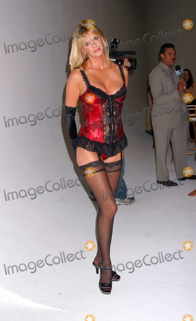 Traci Bingham Photo - - Angie Everhart Nikki Ziering and Traci Bingham Unveils Plans For Lingerie Bowl 2004 - Quixote Studios West Hollywood CA - 06252003 - Photo by Ed Geller  Egi  Globe Photos Inc 2003 - Kylie Bax
