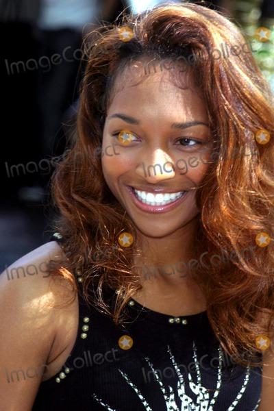 TLC Photo -  Mercedes-benz Fashion Week Kenneth Cole Spring 2004 Collection Bryant Park  NYC 09122003 Photo by John Barrett  Globe Photosinc Rozonda Chilli Thomas of Tlc