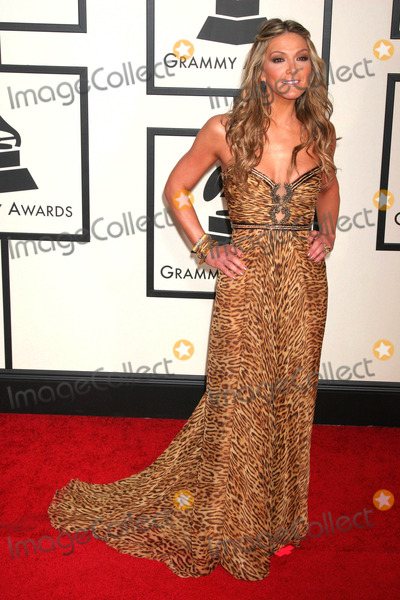 Debbie Matenopoulos Photo - 50th Annual Grammy Awards - Red Carpet Staples Center Los Angeles California 02-10-2008 Debbie Matenopoulos Photo Clinton H Wallace-photomundo-Globe Photos Inc