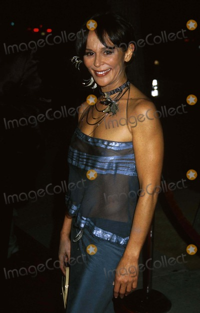 Christine Boisson Photo - Christine Boisson World Premiere the Truth About Charlie the Academy of Motion Picture Arts and Sciences Beverly Hills CA October 16 2002 Clinton Wallaceipol IncGlobe Photos Inc