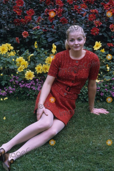 Ewa Aulin Photo - Ewa Aulin Photo by Richard Polak-Globe Photos Inc