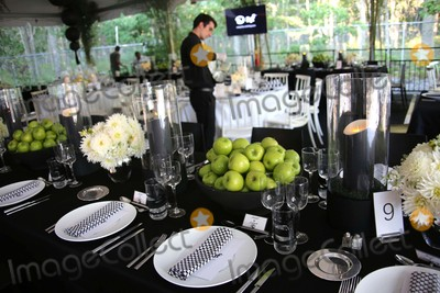 The Animals Photo - Atmosphere at the Animal Rescue Fund of the Hamptons Bow Wow Meow Ball the Arf Adoption Center Wainscott NY August 15 2015 Photos by Sonia Moskowitz Globe Photos Inc