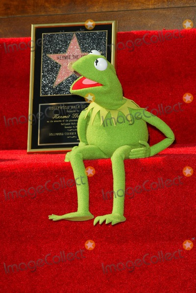 Kermit the Frog Photo - Kermit the Frog Kermit the Frog Honored with a Star on the Hollywood Walk of Fame in Hollywood CA - Photo by Fitzroy Barrett  Globe Photos Inc - 11-14-2002 - K27138fb (D)