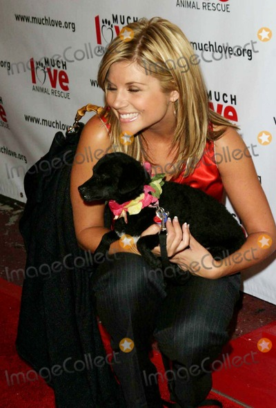Tiffany Photo -  Much Love Animal Rescues  4th Annual Celebrity Comedy Benefit at the Laugh Factory Hollywood CA 08-10-2005 Photo by Ed Geller-Globe Photosinc Tiffani Amber Thiessen