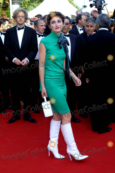 Julie Gayet Photo - Cosima ScavolinilapresseGlobe Photos Inc 05152003 Cannes France the 56 Festival of Cinema the Second Soiree the Presentation of the Film Matrix in the Photo Julie Gayet