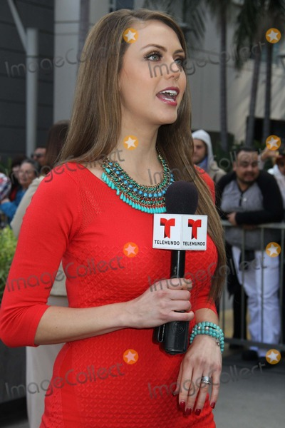 Jessica Carrillo Photo - Thalia Honored with Star on the Hollywood Walk of Fame 6262 Hollywood Blvd Infront of the W Hotel Hollywood Hollywood CA 12052013 Jessica Carrillo of Telemundo Clinton H WallacephotomundoGlobe Photos Inc