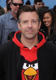 Angry Birds Photo 5