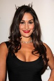 Nikki Bella Photo 5