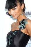 Bai Ling Photo 5