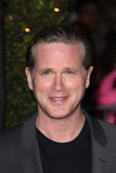 Cary Elwes Photo - NO STRINGS ATTACHED - Archival Pictures - PHOTOlink - 109128
