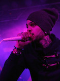 Gym Class Heroes Photo 5