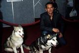 Paul Walker Photo 5