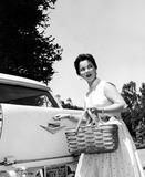 Shirley Temple Black Photo 5
