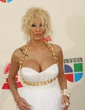 Ivy Queen Photo 5
