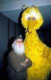 Big Bird Photo 5