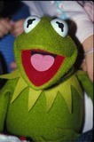Kermit the Frog Photo 5