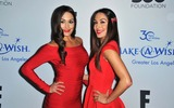 The Bella Twins Photo 5