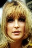Sharon Tate Photo 5