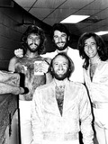 The Bee GEES Photo 5