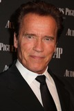 Arnold Schwartzenegger Photo 5