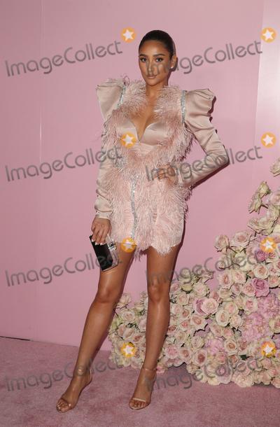 Shay Mitchell Photo - 4 April 2019 - Los Angeles California - Shay Mitchell Launch Of Patrick Tas Beauty Collection  held at Goya Studios Photo Credit Faye SadouAdMedia