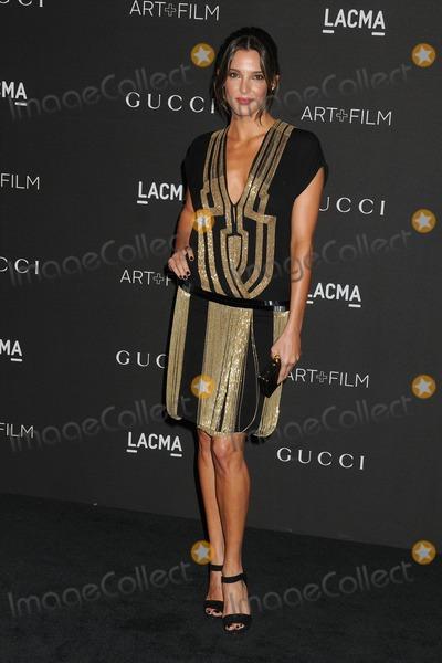 Angela Bellotte Photo - 1 November 2014 - Los Angeles California - Angela Bellotte LACMA Art  Film Gala 2014 held at the LA County Museum of Art Photo Credit Byron PurvisAdMedia