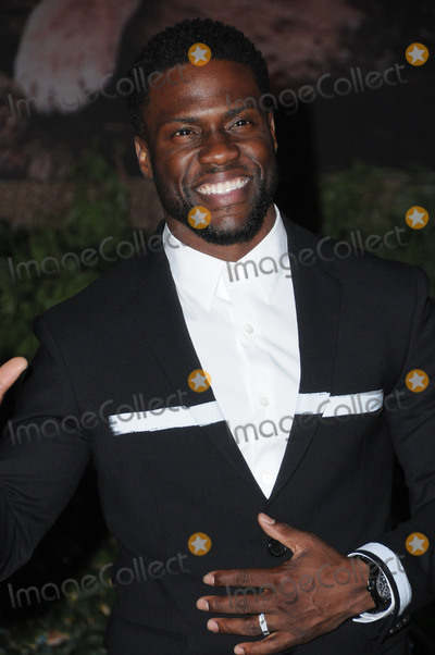 Kevin Hart Photo - 10 December  2017 - Hollywood California - Kevin Hart Jumanji Welcome to the Jungle Los Angeles Premiere held at TCL Chinese Theater in Hollywood Photo Credit Birdie ThompsonAdMedia