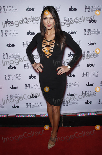 Arianny Celeste Photo - 12 December 2015 - Las Vegas Nevada -  Arianny Celeste  Octagon Girls host after-fight party at Hyde Bellagio Photo Credit MJTAdMedia