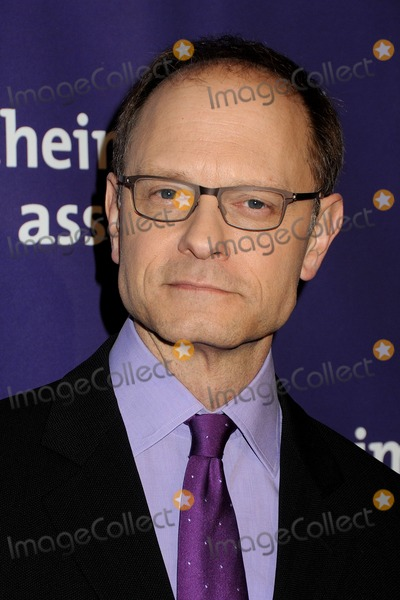 David Hyde Pierce Photo - 21 March 2012 - Beverly Hills California - David Hyde Pierce 20th Anniversary Alzheimers Association A Night at Sardis held at the Beverly Hilton Hotel Photo Credit Byron PurvisAdMedia