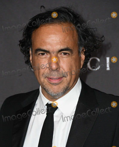 Alejandro Gonzalez Inarritu Photo - 02 November 2019 - Los Angeles California - Alejandro Gonzalez Inarritu 2019 LACMA Art  Film Gala Presented By Gucci held at LACMA Photo Credit Birdie ThompsonAdMedia