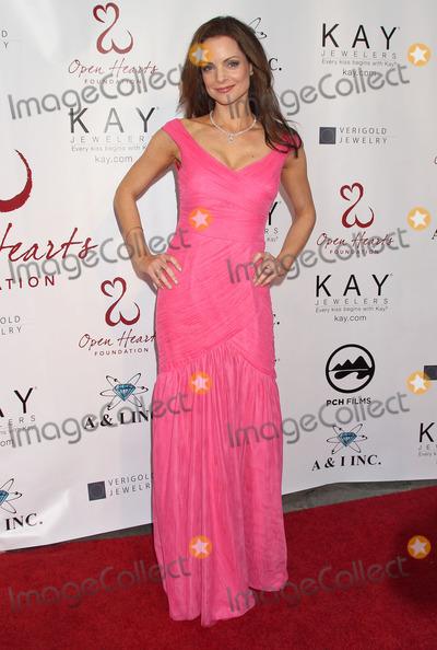 Kimberly Williams Photo - 10 May 2014 - Malibu California - Kimberly Williams-Paisley  Open Hearts Foundation 4th Annual Gala Photo Credit Russ ElliotAdMedia